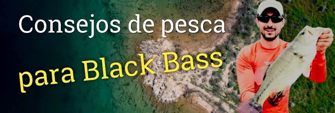 Consejos de pesca para Black Bass